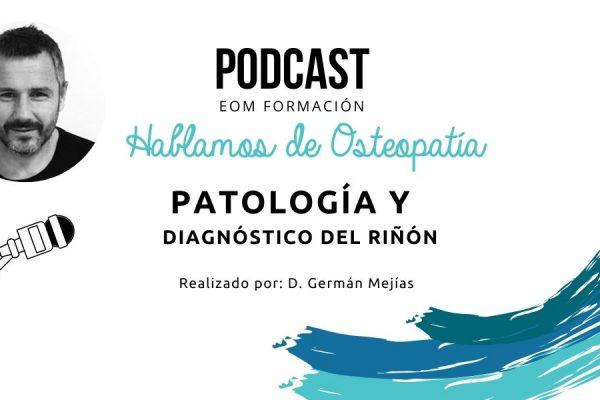Patología y diagnóstico del riñón.