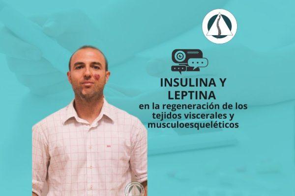 insulina y leptina