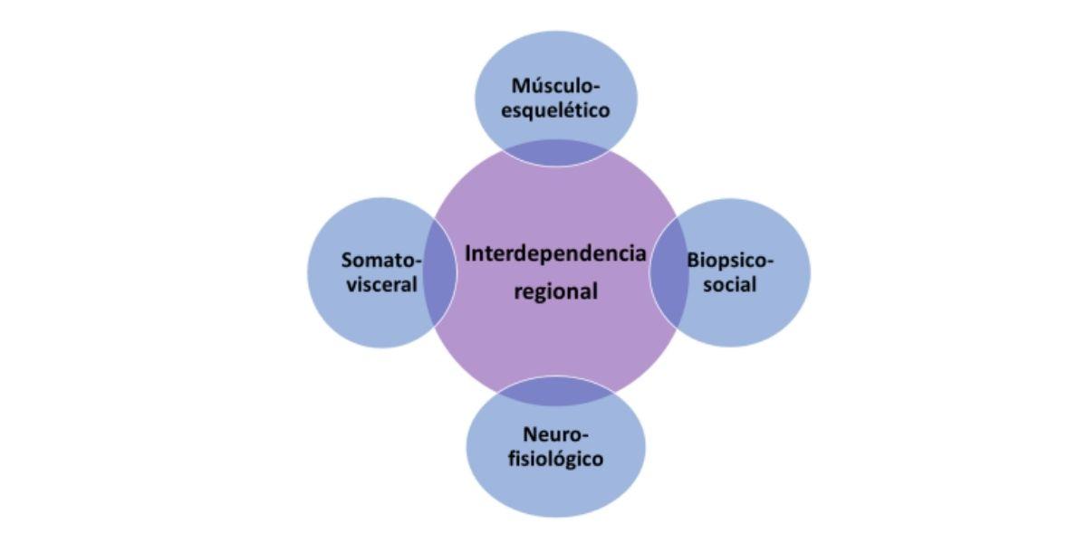 Interdependencia regional